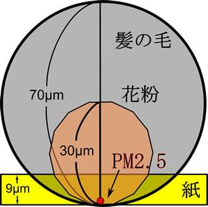 pm2501s