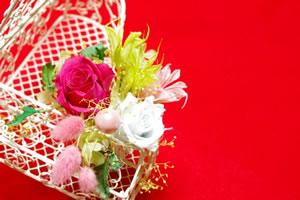 preservedflowers01