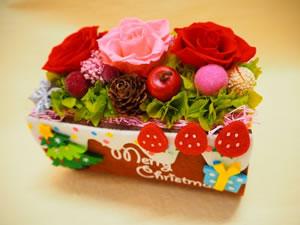 preservedflowers02