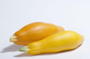 zucchini04
